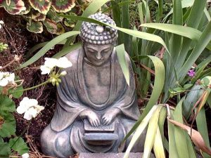buddha laptop